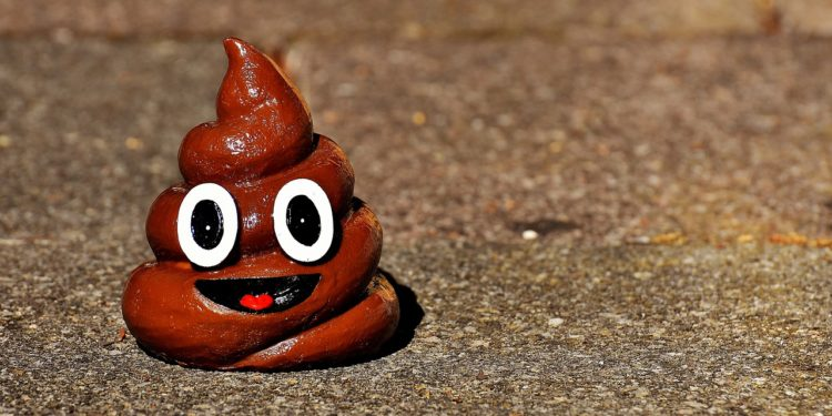 A Feces Filled Pop-Up Shop is Coming to NYC