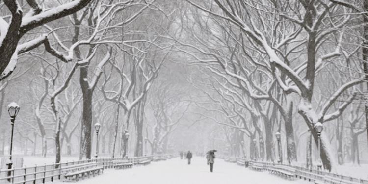 Image Source: Glenwood NYC
