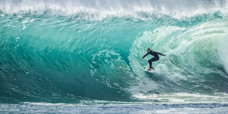 The best surfing movies to date.