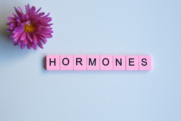 intermittent fasting and the negative effects on hormones.