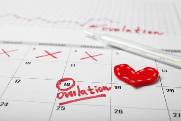 Keeping track of ovulation is an important part of fertility-tracking.
